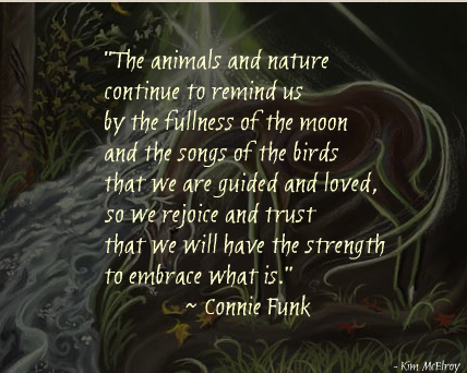the-animals-and-nature-continue-to-remind-us-by-the-fullness-of-the-moon-animal-quote